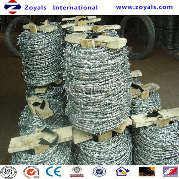 Electro and Hot dipped galvanized wire mesh rolls dongtai (specialized manufacturer)