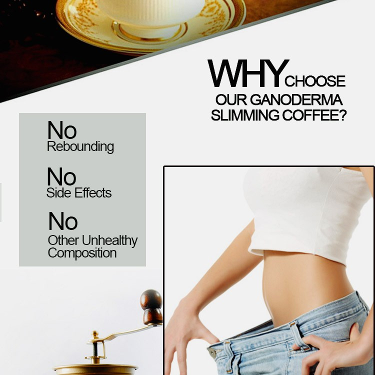 Chinese Factory Instant Lingzhi Slimming Loss Weight Coffee