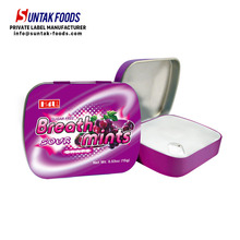 Bulk Mint With Tins For Wholesales Sugar Free Candy