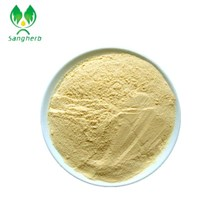 China manufacturer mango seed extract mangiferin with high quality
