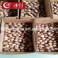 cheap price about solo fermented balck garlic