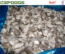 IQF frozen baby oyster mushroom good buy choice