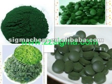 nature and 100% pure chlorella spirulina platensis powder
