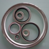 auto oil seals ptfe lip-rotary shaft seals