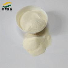 edible beef halal edible cow bone gelatin powder for beer with high quality