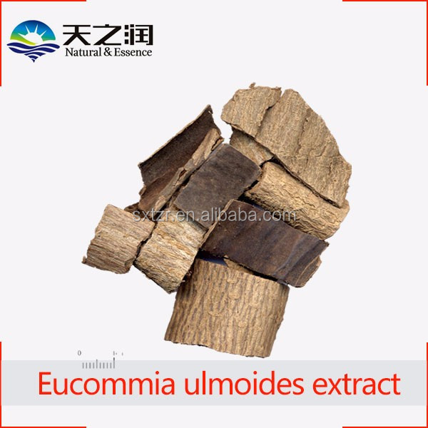 Eucommia ulmoides extract | hardy rubber tree extract