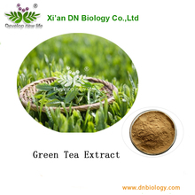 green tea extract, polyphenols, EGCG, catechins,epicatechin, full specs 10%-98% , ORAC values 20,000/gram, Professional supplier