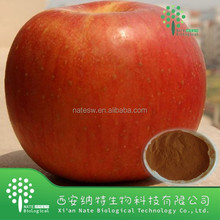 Natural Apple Skin Extract Powder phloridzin, apple phlorizin,95% phlorizin