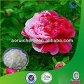 Natural high quality white peony root extract