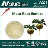ISO certified powder 1:1,4:1,10:1,20:1 maca peru free shipping !