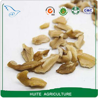 cheap price small size broken walnut kernels for oil