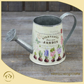 Spring Home & Garden Decor Floral and Watering Can Special for Flower Plant pot