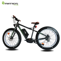 Cheap import pocket electric bike,long range electric bike