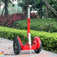 Wind Rover V5 pink motor foldable electric scooter 50cc for kids