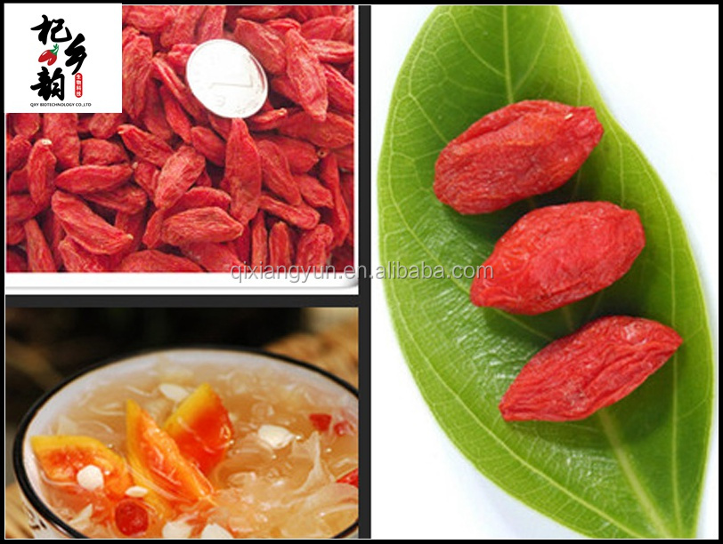 Hot selling 2016 high quality health dried goji berry
