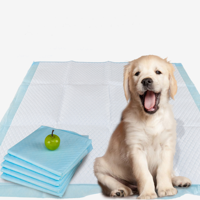 Hot selling fashion disposable thick blue dog potty pad wholesalers