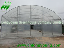 high tunnels vegetable greenhouse