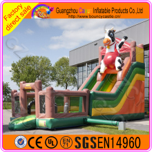 Large inflatable water slide jelly slides for children