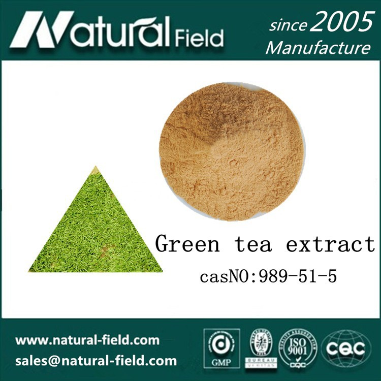 Critical process finshed bio green tea extract 45% tea