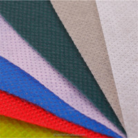 China Manufacturer Directory Non Woven Spunbond Fabric TNT