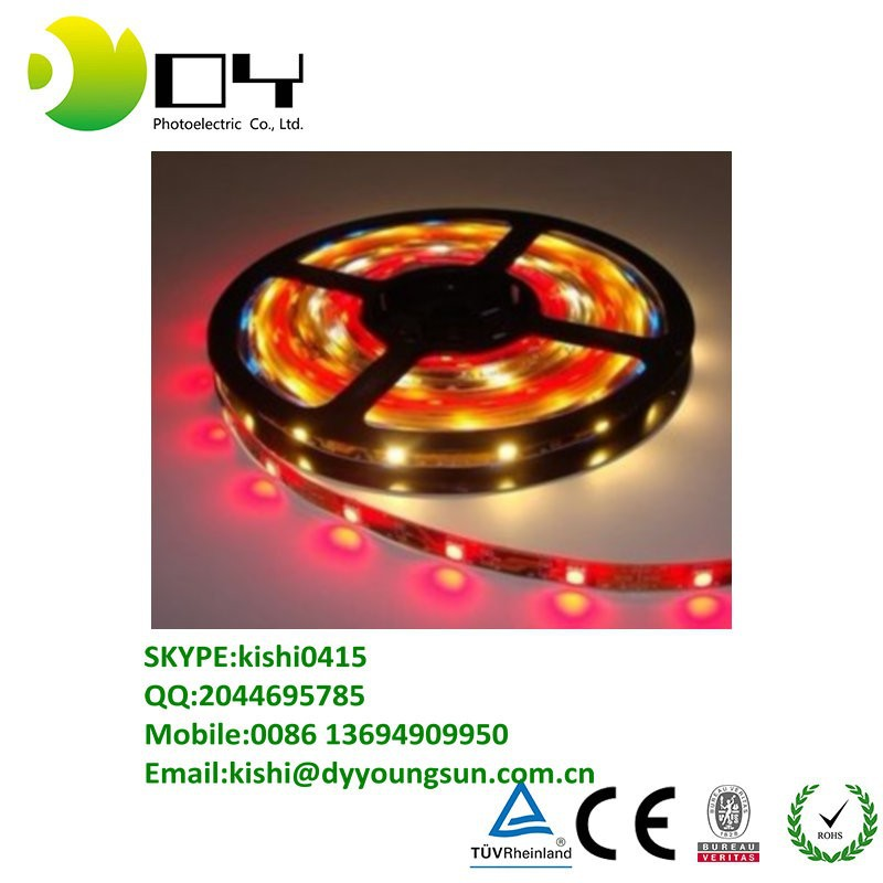 Non waterproof DC5v 5m 300 leds 60 pixels/m 5050 smd ws2812 ws2811 rgb led strip lights white pcb Programmable Addressable