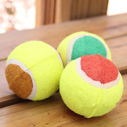 2016 New Hot Selling Pet Toys Tennis Ball Dog Chew Toys