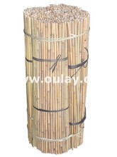 Tonkin bamboo canes LOW PRICE