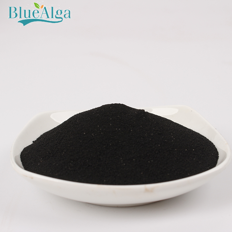 Natural Plant Hormone Bio organic Liquid 100% Soluble Seaweed Extract Powder Fertilizer