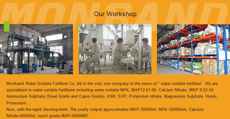Fully Water Soluble Fertilizer NPK 20-20-20