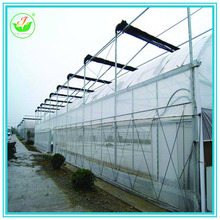 China professional Manufacturer Poly Tunnel Green House