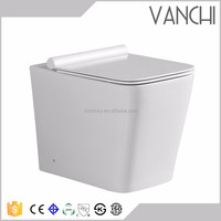 China sanitary ware ceramic twyford squatting toilet back to wall pan