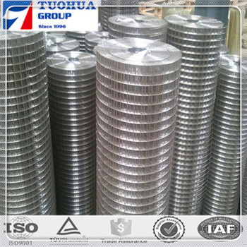 "with advanced equipment rich expertise, 1/2"" hot dip galvanized welded wire mesh"