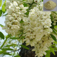 Free Samples Sophora Japonica Flower Extract