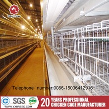 High quality large animal cage for laying hens chicken house design