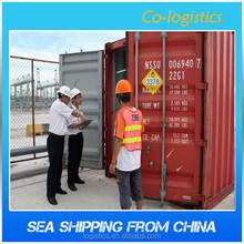 container cargo shipping to Beirut Lebanon from Shanghai/ Shenzhen ---Elva skype:colsales35