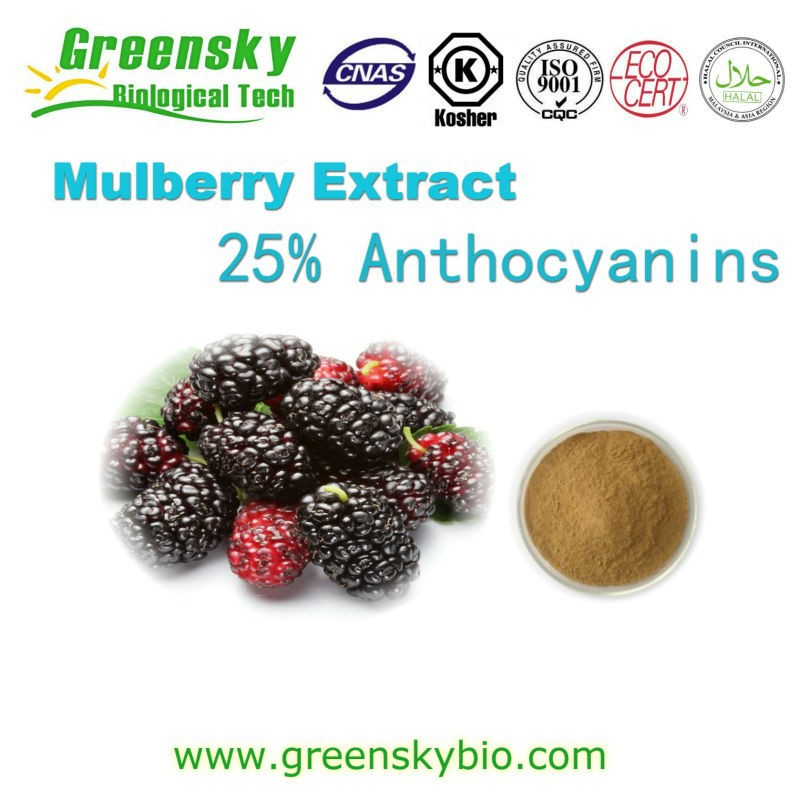 100% natural Mulberry Fruit Extract/ Mulberry Extract powder