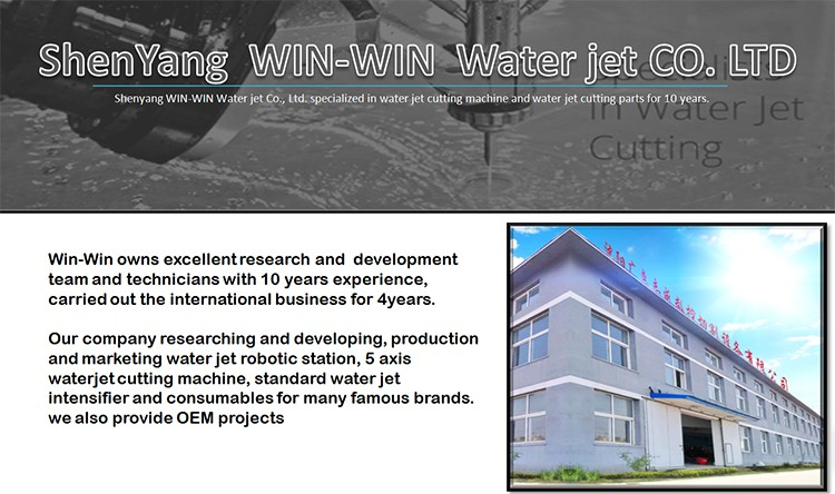 Quality Guarantee Automatic CNC Granite Water Jet Cutting Machine