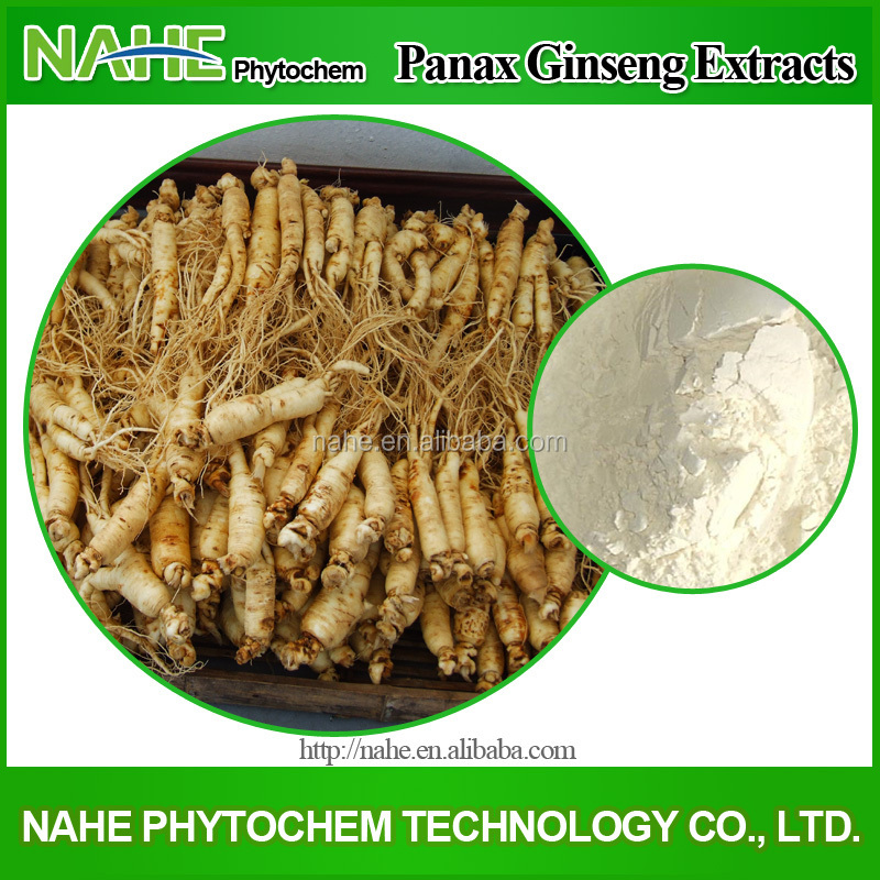 2015 Best Selling Dried Style and Food Product Type Ginseng Extract