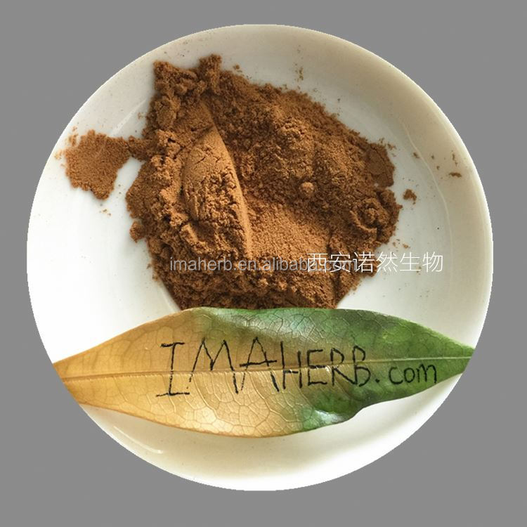 GMP Manufacture GMO Free sweet tea leaf extract for sale