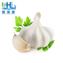 Jining Red 5.0cm and up Fresh Garlic