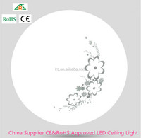 China Supplier CE&RoHS Approved LED Ceiling Light 14W
