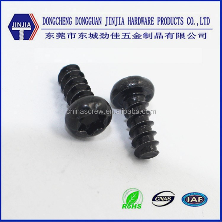 Dongguan hardware factory M4x10 Plastic black anodized torx pan head screw