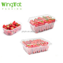 disposable plastic fruit punnet