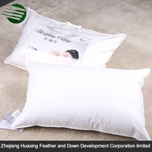 Customized Type Lifelike-visual Widely Used Down Pillow