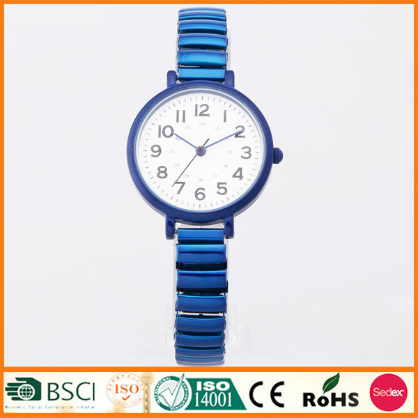 Stainless Steel Back Expanding Band Lady Watch SYL140142