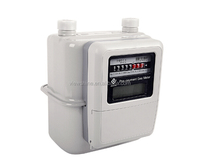 Smart Diaphragm Gas Meter