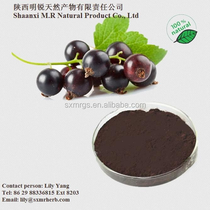 25% Anthocyanidin Black Currant Extract Powder/Black Currant Extract Powder
