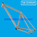 taper head tube Gr9 titanium cool mountain bike frame TSB-CBM1001