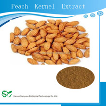 Hot sale Plant extract peach kernel extract/Peach seed extract/peach extract