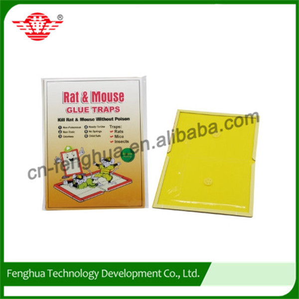 Useful professional mouse glue trap/mouse trap